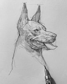 #sketch  #drawings #sketchart  #efrainmalo #animalart #animalsketch #animaldrawing #dogdrawing