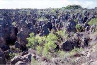 Environment: Land Degradation Involves Huge Costs