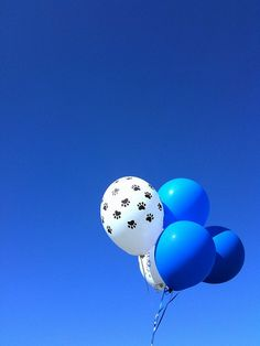 Love this! You can get the paw print balloons here! http://www.balloon-printing.com