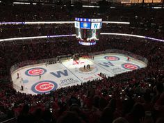 Blackhawks celebrate Cubs WS victory<-----THAT'S AWESOME