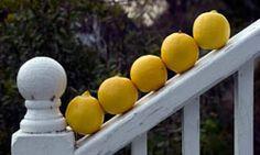 Top 5 Natural Exfoliants - lemon juice, sugar, sea salt, yogurt, honey, baking soda