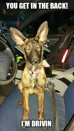 There r no words..... Only ears :)