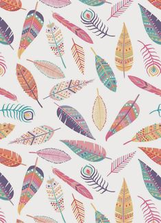 Emily Kiddy: Feather Print