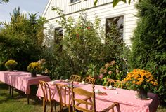 You can arrive at this tea garden by boat, it's not so far from Amsterdam (Broek in Waterland). This lovely spot, ''t Einde' to have your high tea is a real treat.
