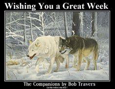 Bob Travers
