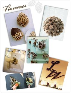"""""""Pine"""" Cones :)"""