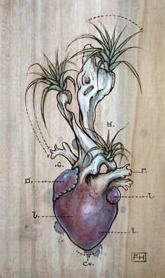 Driftwood Heart 05 by Fay Helfer