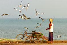 Asie 2015 (Birmanie et Inde): 15 février 2015 : Thandwe -Sittwe