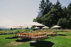 Large patio umbrellas for the ceremony?   Photography by tinywater.com, Event Coordination by jubileelauevents.com