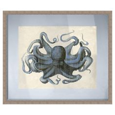 Framed giclee print featuring an octopus.  Product: Framed printConstruction Material: Paper, glass, and polysty...