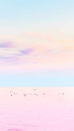 The most perfect #pastel #sunset ever! Check out our iPhone wallpaper collection…