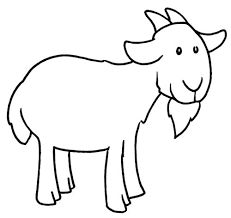 Pages O Draw A Cartoon Sheep Step 5 Animals Sheeps Free