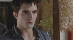 Edward's terror at the realization that Bella is pregnant