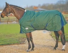 Orican Lite Standard Turnout with Freestyle by Weatherbeeta. $125.99. Teflon Coated. Innovative Freestyle System. Standard Neck. Taped Seams. Waterproof, Breathable. From the original Weatherbeeta - The Official Horse Clothing of AQHA and IHSA. The Orican Lite Turnout features all the same great features of Orican turnout blankets in a lightweight, mesh-lined three-season sheet.  Features: