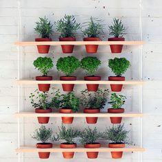 Los jardines verticales permiten a quienes no cuentan con jardín, patio o terraza dedicarse a su afición favorita simplemente contando con un pequeño espacio.