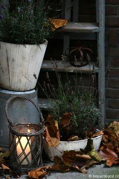 van-nazomer-naar-herfst