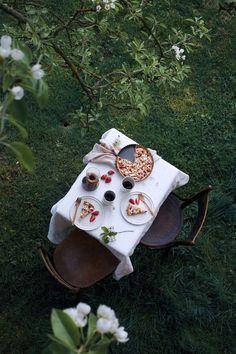 glutenfree rhubarb-strawberry tart with almond custard and licorice puder
