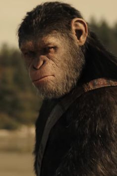 Humans Fight Back in the First War For the Planet of the Apes Trailer