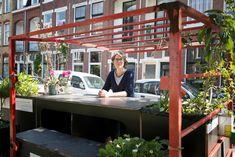 Sun terraces and lawns: Dutch residents transform parking spaces