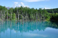 空に抜ける青に立つカラマツ、異空間への入口を思わせる奇跡の池