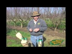 Grafting - HowTo