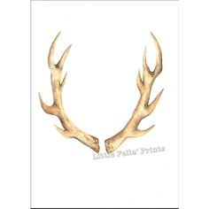 Antlers Watercolour Print, Rustic wall art, woodland theme decor,... (€16) ❤ liked on Polyvore featuring home, home decor, wall art, stag wall art, deer wall art, hunt painting, antler home decor and outside home decor