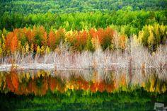 Reflection of Autumn : Krasnoyarsk Krai, Russia