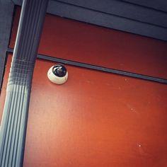 Images FHD Haute Qalité: Avec une résolution de 1920* 1080P,vous pouvez parfaitement enregistrer les moments de croissance de votre enfant et enregistrer les merveilleux moments de la famille et des animaux domestiques. Vision Nocture: 9 LEDs infrarouge 850nm vous permet de visionner une vision nocturne extra-claire pendant la nuit jusqu'à 30 pieds, vous offrez une très fluide et claire vidéo et image toute la nuit. Audio Bidirectionnel: Avec le microphone et le haut-parleur intégrés, vous pouve Camera Surveillance Wifi, Carte Sd, Nocturne, Belly Button Rings, Images, Door Handles, Night, Kid