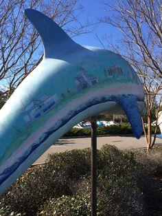 Oceanfront History Dolphin at Virginia Aquarium