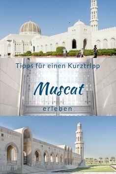 Muskat im Oman ist eine zauberhafte Stadt, erlebe die Große-Sultan-Qabus-Moschee, die Souks, Muttrah Cornichon, arabisches Essen und Al Qurum. Tipps für einen Kurztripp nach Muscat.