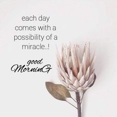 good morning images with love quotes Positive Morning Quotes, Happy Morning Quotes, Good Morning Inspirational Quotes, Morning Love, Good Morning Flowers, Morning Greetings Quotes, Good Morning Messages, Good Morning Good Night, Good Morning Wishes