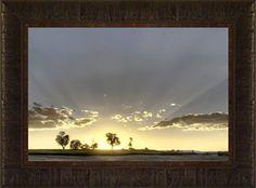 Illumination By Todd Thunstedt 17.5x23.5 Tree Sunshine Pr... https://www.amazon.com/dp/B0763C71NR/ref=cm_sw_r_pi_dp_x_OFL3zbXQP7RH3
