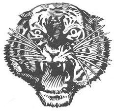 Wildcat –