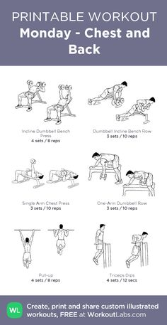 Chest/Back Perform as circuit - minutes rest between sets. Warm-up for first 2 exercises with a couple of sets at lower weights. Perform pullups and dips with weight belt of can do more than or reps respectively. 6 heavy pull-ups and 8 heavy dips is fine. Back Workout Men, Chest And Back Workout, Gym Workouts For Men, Workout List, Workout Warm Up, Gym Workout Tips, Chest Workouts, Workout Schedule, Lower Chest Exercises