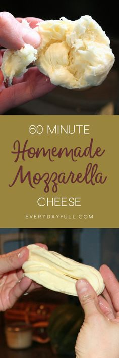 60 MINUTE MOZZARELLA RECIPE - If you're a cheese newbie, or just looking for a simple and easy cheese recipe, this is the one! Enjoy fresh, soft, whole milk mozzarella in an hour. Ever made homemade string cheese for your kids? Recipes With Mozzarella Cheese, Cheese Recipes, Real Food Recipes, Cooking Recipes, Easy Cheese, How To Make Cheese, Cheese Food, Cheese Plates, Cheese Sauce