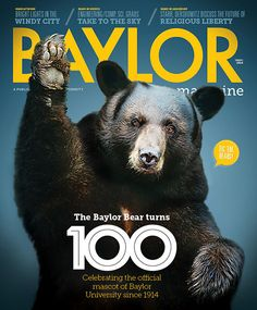 The #Baylor Bear turns 100! The Spring 2014 issue of Baylor Magazine celebrates the university's mascot, which became official in 1914. #SicEm