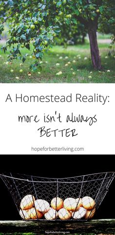 It's easy to get caught up in thinking more is better on the homestead. Don't buy into this kind of thinking!