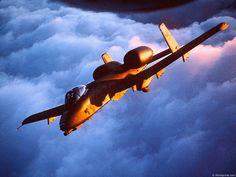 A-10 Thunderbolt II/Warthog