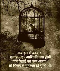 Quotes and Whatsapp Status videos in Hindi, Gujarati, Marathi Osho Quotes Love, Osho Hindi Quotes, Shyari Quotes, Marathi Quotes, Love Quotes In Hindi, Gujarati Quotes, Motivational Quotes In Hindi, Punjabi Quotes, Indian Quotes