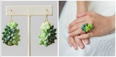 These Succulent Accessories Actually Grow While You Wear Them