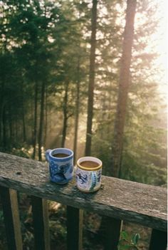 Morning sunbeams in the forest. Cosy up with a cup of coffee and embrace 'hygge'. Cabins In The Woods, Back To Nature, Simple Pleasures, Plein Air, Belle Photo, The Great Outdoors, Coffee Cups, Coffee Coffee, Coffee Break