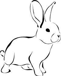 """For my bunny tattoo? Um YES! How cute is this? I want to get it really small and either in white (which I'm still iffy about) or freckle-tone ink. The question is then """"where?""""."""