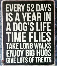Every 52 days is a year in a dog's life ...