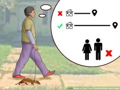 3 Ways to Train Your Ferret to Walk on a Leash - wikiHow