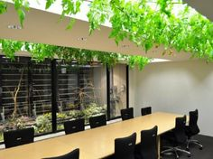 This Edible Office Grows its Own Lunch | Architecture on GOOD