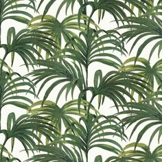 PALMERAL Wallpaper Off White / Green
