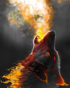 Sky above me. Earth below me. Fire within me. #rewild #fire #elements #wilderness #primal #wolf #passion #rewildyourlife