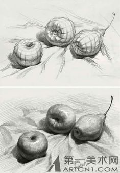 The still life is along with the figure and landscape is one of the main traditi. - The still life is along with the figure and landscape is one of the main traditions with art. Basic Drawing, Drawing Skills, Drawing Lessons, Drawing Techniques, Figure Drawing, Drawing Things, Drawing Poses, Drawing Ideas, Still Life Drawing
