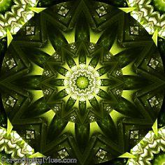 Day 47: Green Mojo (kaleidoscope)