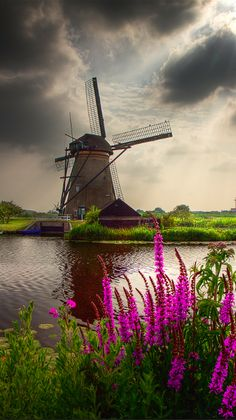 Scenic setting in Kinderdijk, Netherlands • photo: Dollia Sheombar on Flickr